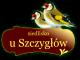 Noclegi na Mazurach, Siedlisko Żywki